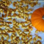 Gluten Free Spiced Pumpkin Seeds