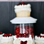 Gluten Free Vegan Vanilla Pomegranate Cupcakes