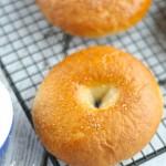 Gluten Free Egg Free Bagels (Vegan Dairy Free)