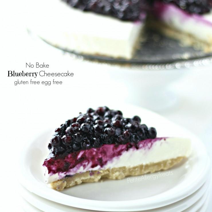 BlueberryCheeseCake1.5FBcrop