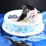 Shark Cake (egg free dairy free gluten free food allergies)
