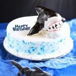 Shark Cake (egg free dairy free gluten free food allergies)