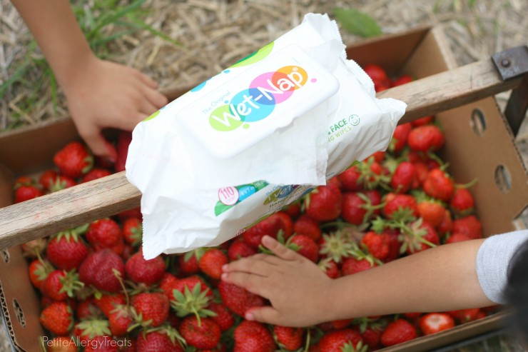 StrawberryPicking- PetiteAllergyTreats #conquerthemess, #pmedia, #ad