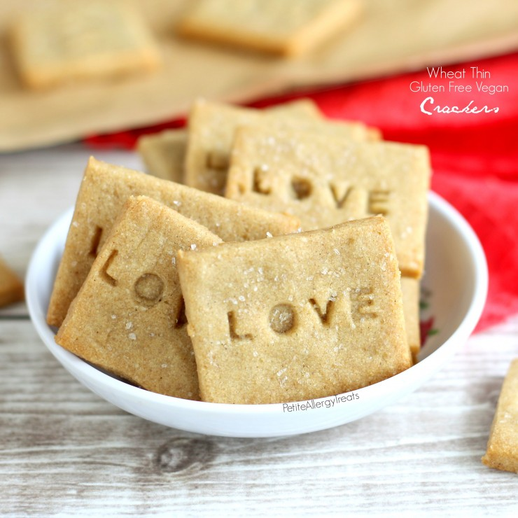 Gluten Free Crackers (Vegan 'wheat thins')  The Best copycat gluten free dairy free cracker with whole grains.
