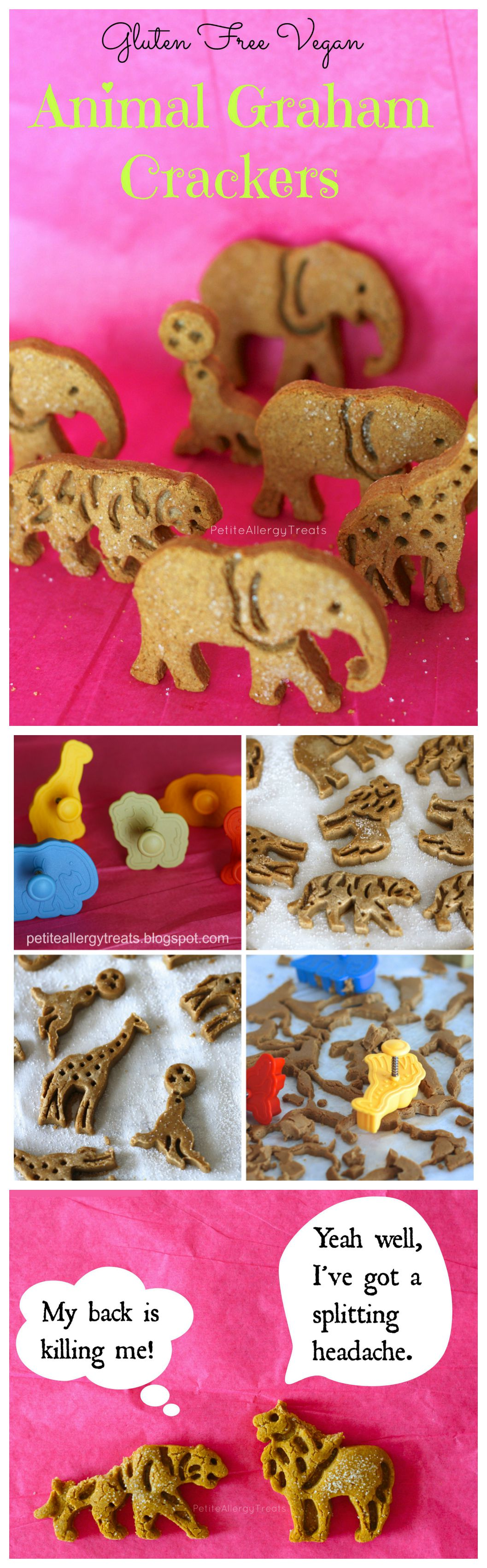 Animal Graham Crackers (gluten free Vegan) Kids will go crazy for these cute animal crackers!