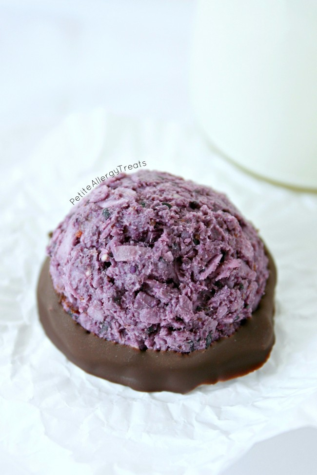 Blueberry Macaroons (egg free gluten free no bake Vegan) Super easy no bake blueberry coconut macaroons.
