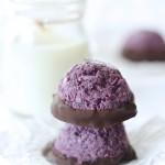 Blueberry Macaroons (egg free gluten free Vegan)