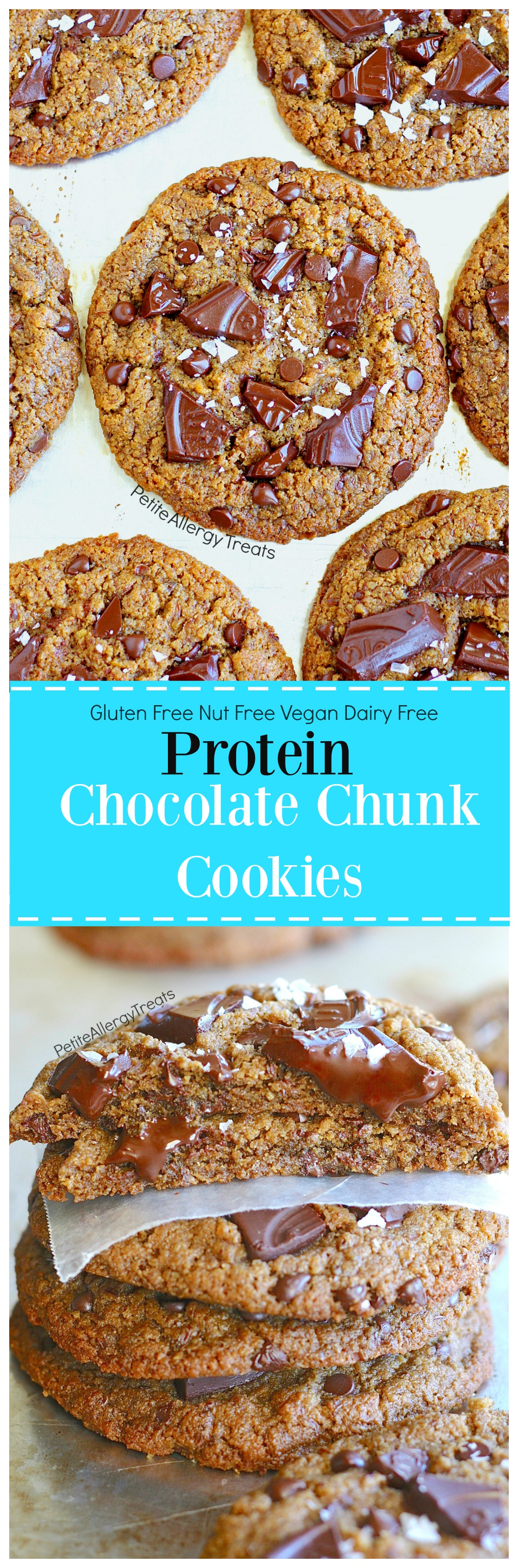 Gluten Free Chocolate Chunk Protein Cookies (nut free vegan dairy free) Recipe- Crisp bakery style food allergy friendly peanut butter-free chocolate chip cookies.