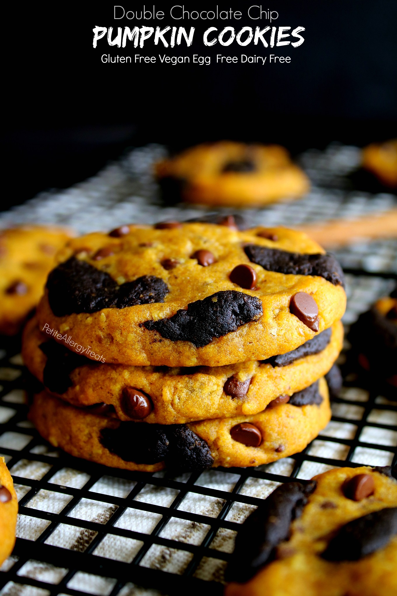 Gluten Free Double Chocolate Chip Pumpkin Cookies Recipe (vegan dairy free) Pumpkin filled chocolate cookies with warm pumpkin spice. Food Allergy friendly.