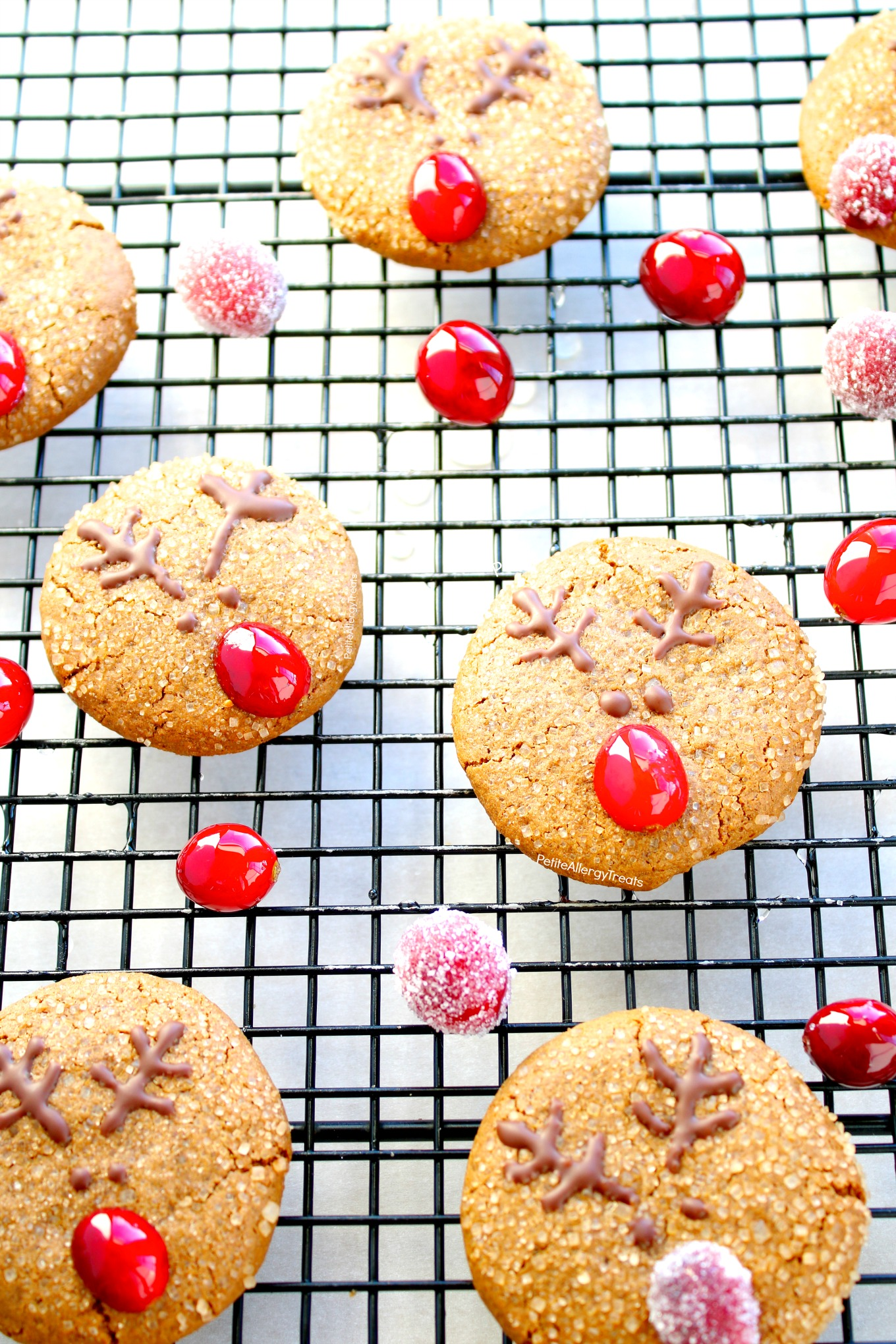 Dairy Free Reindeer Cookies (Soft Gluten Free Vegan Gingersnap Cookies) Recipe- Adorable Christmas reindeer cookies with natural red nose. Food Allergy friendly!