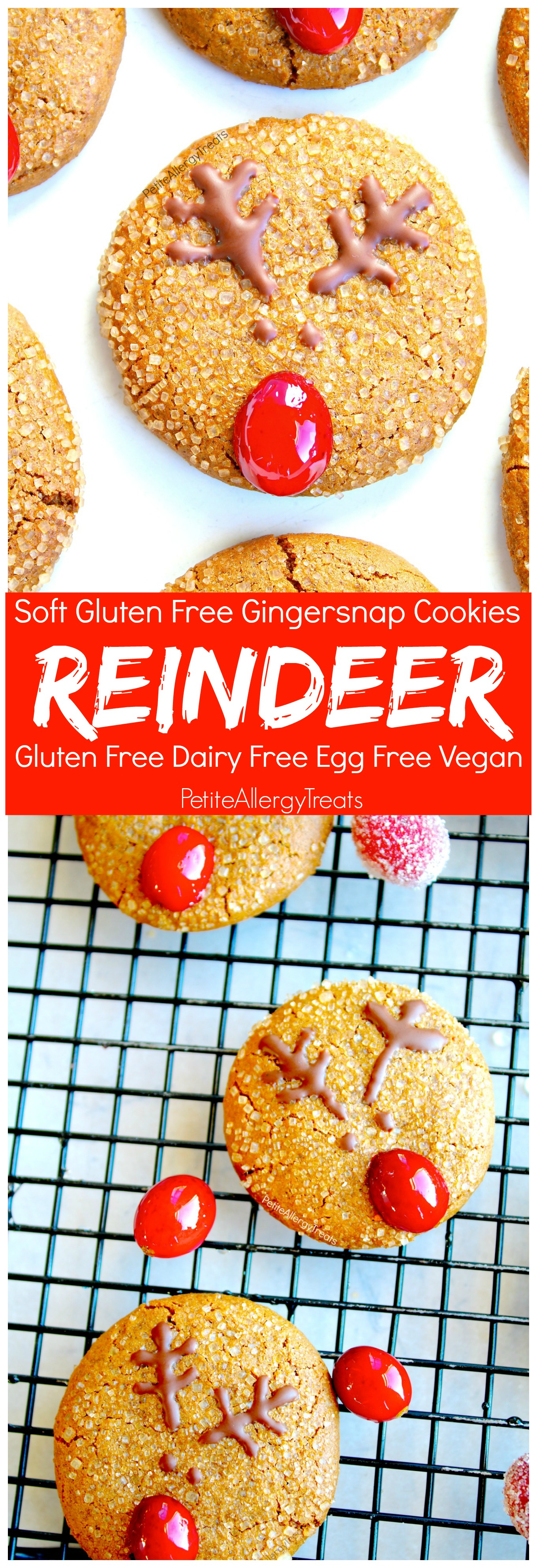 Gluten Free Gingersnap Reindeer Cookies (vegan dairy free) Recipe- Adorable Christmas reindeer cookies with natural red nose. Food Allergy friendly!