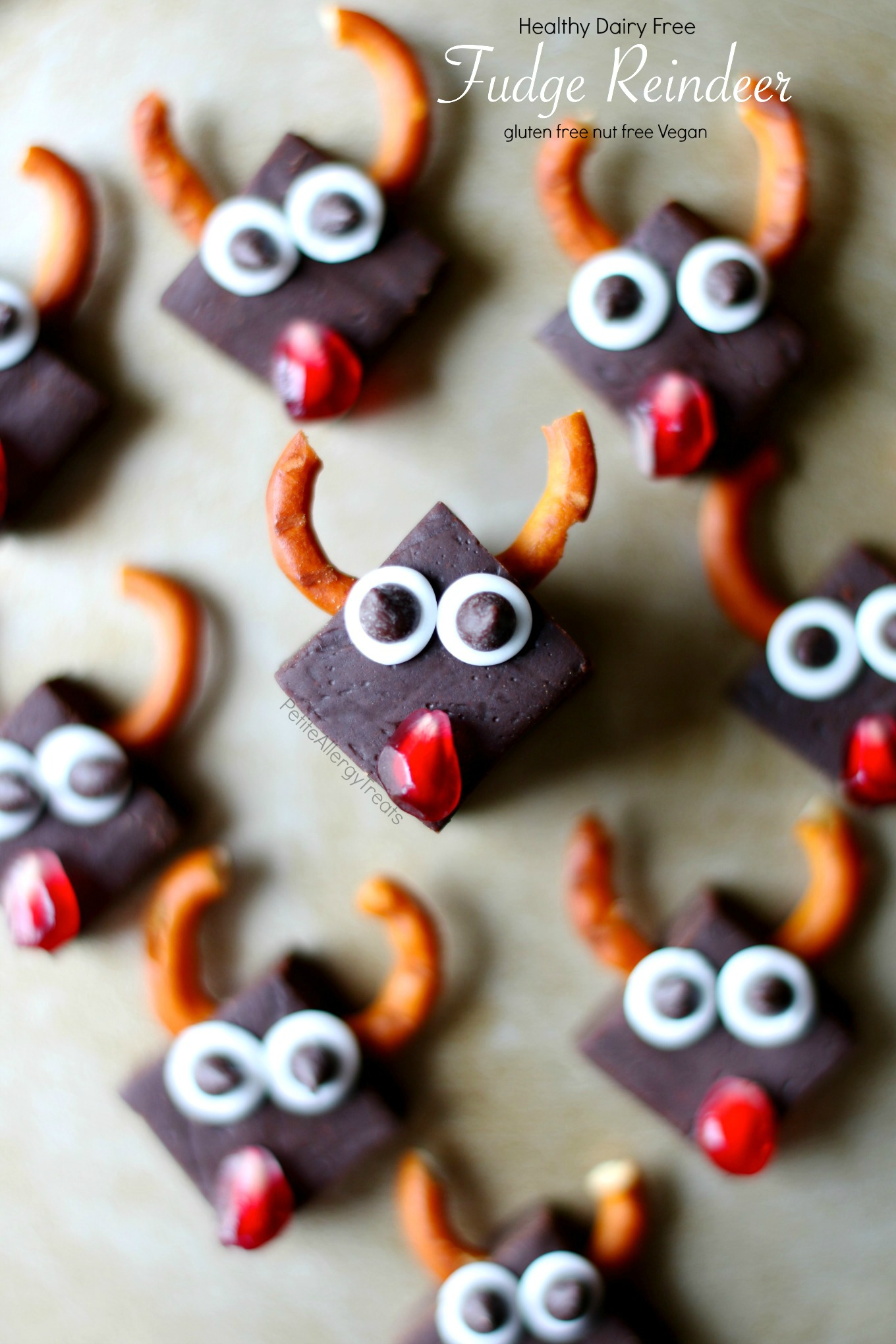 Healthy Dairy Free Fudge Reindeer Recipe (vegan gluten free)- Healthy chocolate fudge (with vegetables) for Christmas! Dye free gluten free and food allergy friendly