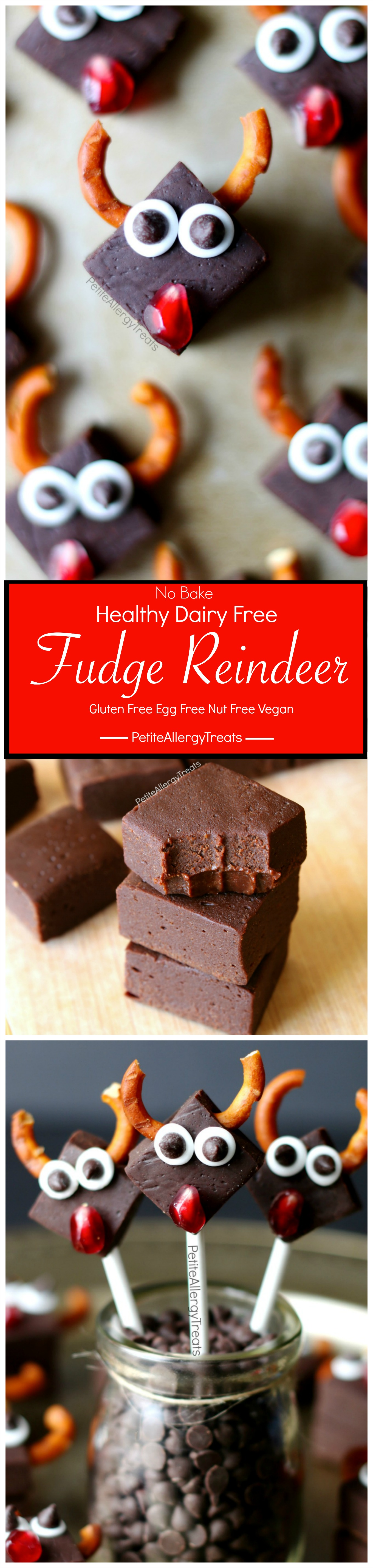 Healthy Dairy Free Fudge Reindeer Recipe (vegan gluten free)- Healthy chocolate fudge (with vegetables) for Christmas! Dye free gluten free and food allergy friendly