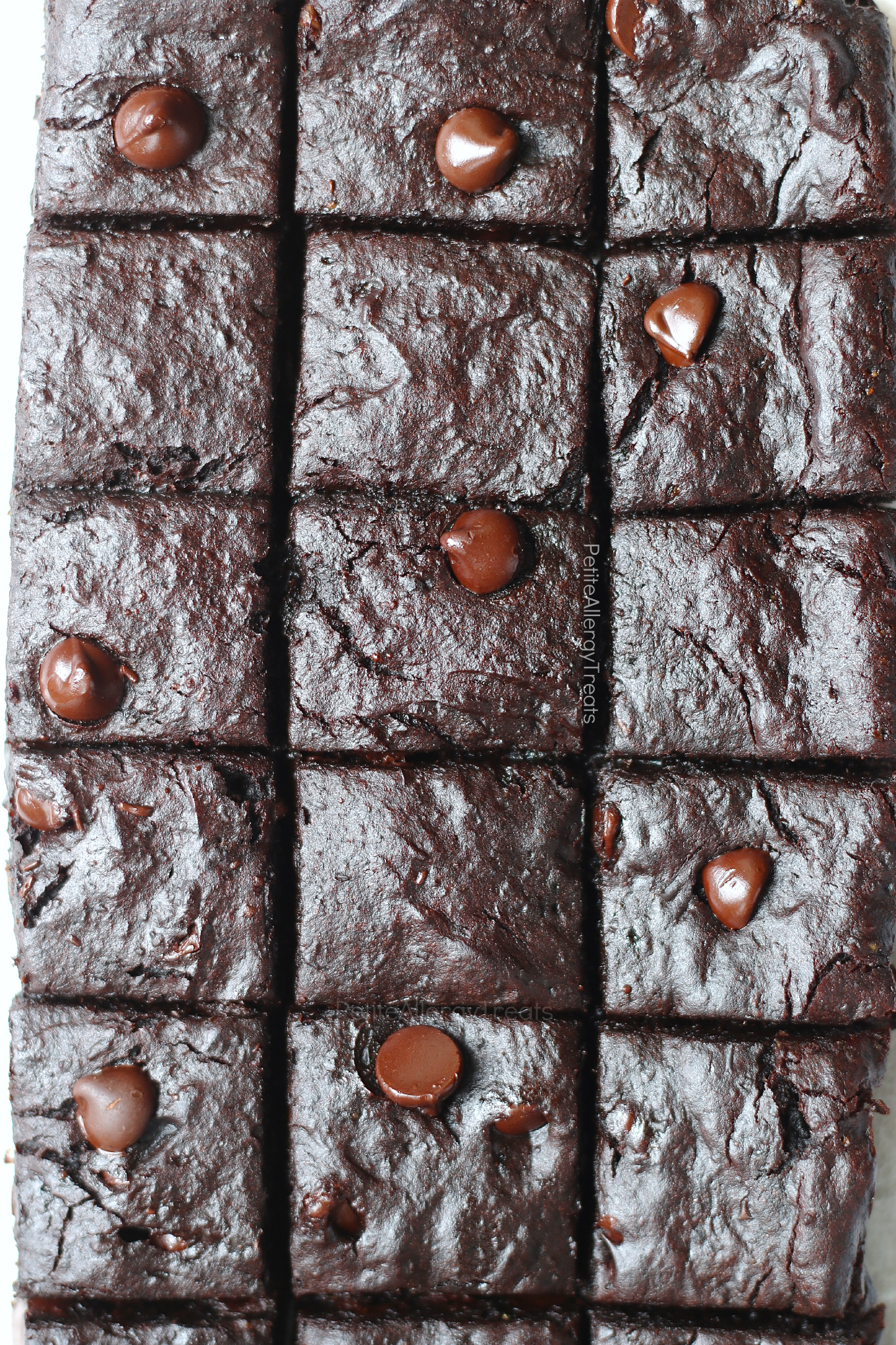 Protein Flourless Brownies (egg free dairy free gluten free Vegan) Recipe- Gooey decadent brownies packed with protein. Nut free and Food allergy friendly.