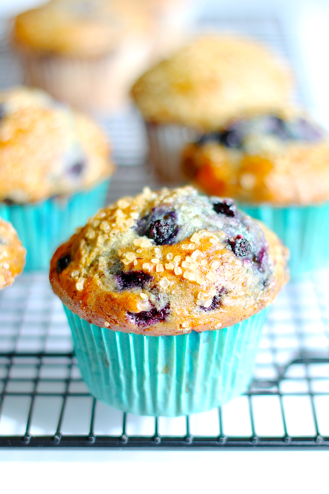 Blueberry Muffins (gluten free vegan dairy free egg free) Recipe- Delicious HUGE Bakery style gluten free blueberry muffins! Super #FoodAllergy friendly- #dairyfree, #eggfree, #nutfree #soyfree
